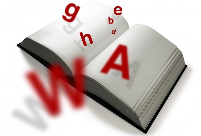 Dictionar de termeni auto (T-W)
