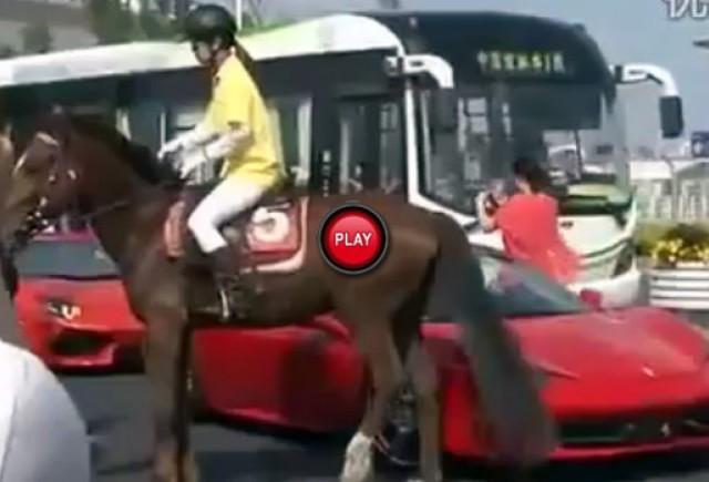 VIDEO: Duel interesant intre un cal si un Ferrari F458 Italia