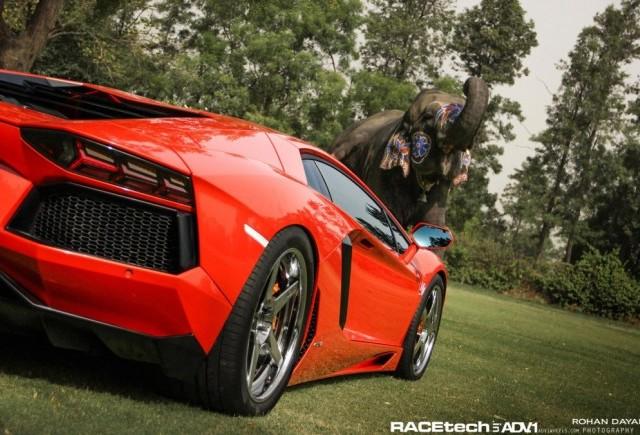 Sesiune foto inedita - Lamborghini Aventador impreuna cu un elefant
