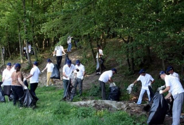 Dacia a curatat de gunoaie o padure de langa Pitesti