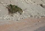 REPORTAJ: Drumurile yugoslave vs. drumurile romanesti28600