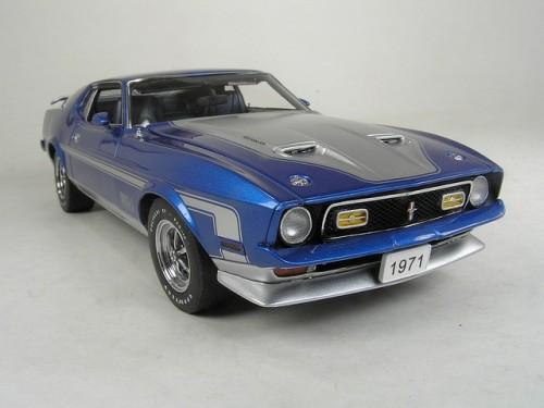 Informatii generale despre Mustang Mach 128216