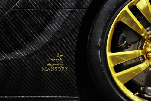 Bugatti Veyron, tunat in aur si fibra de carbon27783