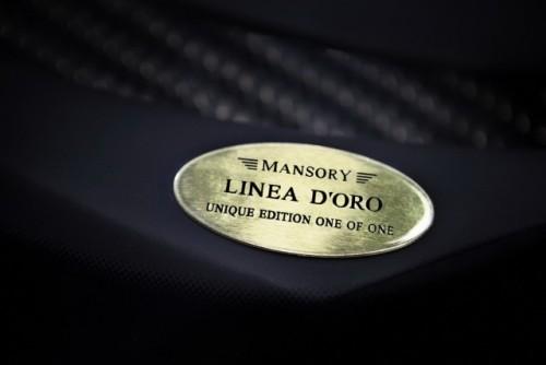 Bugatti Veyron, tunat in aur si fibra de carbon27785