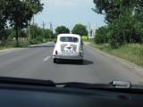 FOTO: Fiat isi da mana peste ani!27328