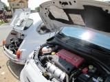 FOTO: Fiat isi da mana peste ani!27349