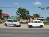 FOTO: Fiat isi da mana peste ani!27330