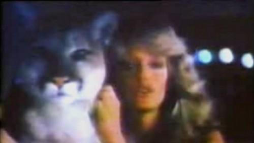 GALERIE VIDEO: Cele mai reusite reclama din istoria Mercury25698