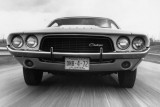 Dodge Challenger implineste 40 de ani25524