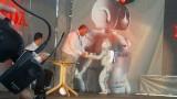 Galerie Foto: Honda prezinta robotul Asimo in Romania24975