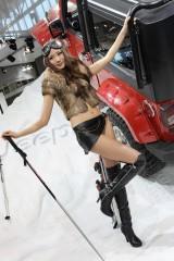 Galerie Foto: Frumusetile Chinei la Salonul Auto de la Beijing24172