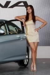 Galerie Foto: Frumusetile Chinei la Salonul Auto de la Beijing24175