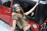 Galerie Foto: Frumusetile Chinei la Salonul Auto de la Beijing24181
