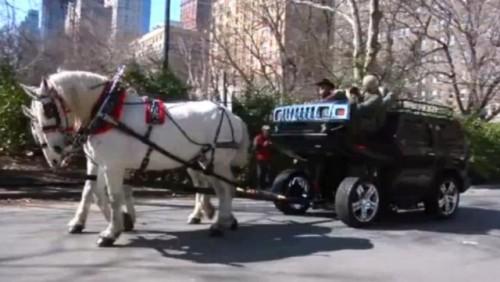 VIDEO: Hummerul cu doi cai putere22787