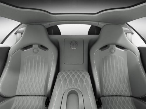 Geneva LIVE: Bugatti dezvaluie doua editii speciale ale lui Veyron Grand Sport21239