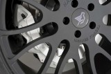 Geneva preview: BMW X6 de 670 CP marca Hamann20474