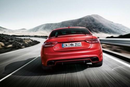 Primele imagini cu Audi RS520384