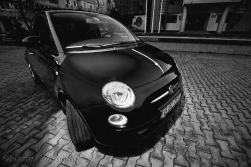 Masini.ro prezent la Fotografiile Anului 200917765