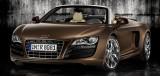 Audi, triplu medaliata la