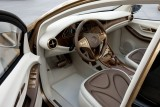 Vezi imagini cu noul Mercedes BlueZERO E-Cell14103