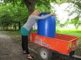 EXCLUSIV: Fetele de la masini.ro (7)12687