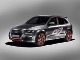 Audi Q5 Custom Concept11226