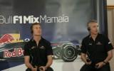 David Coulthard: Nu mai sunt pilotul de rezerva Red Bull10342