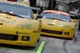 Corvette - respect invingatorului9782