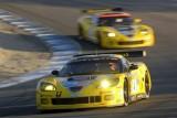 Corvette - respect invingatorului9780