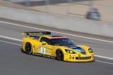 Corvette - respect invingatorului9785
