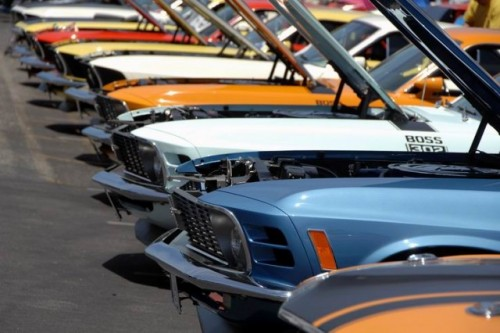 Mandriile americane: eveniment - Mustang 302 Boss9711