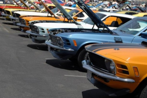 Mandriile americane: eveniment - Mustang 302 Boss9713