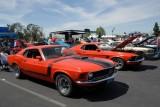 Mandriile americane: eveniment - Mustang 302 Boss9718