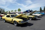 Mandriile americane: eveniment - Mustang 302 Boss9723