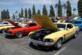 Mandriile americane: eveniment - Mustang 302 Boss9726