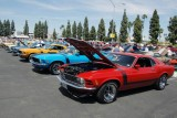 Mandriile americane: eveniment - Mustang 302 Boss9709