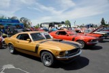 Mandriile americane: eveniment - Mustang 302 Boss9717