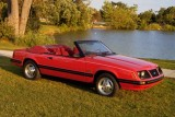 Mandriile americane: eveniment - La Multi Ani Mustang!8716
