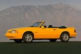 Mandriile americane: eveniment - La Multi Ani Mustang!8728