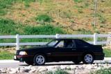 Mandriile americane: eveniment - La Multi Ani Mustang!8722