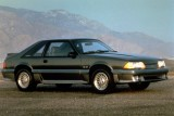 Mandriile americane: eveniment - La Multi Ani Mustang!8723