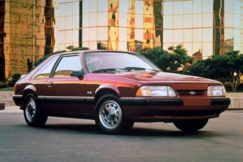 Mandriile americane: eveniment - La Multi Ani Mustang!8724