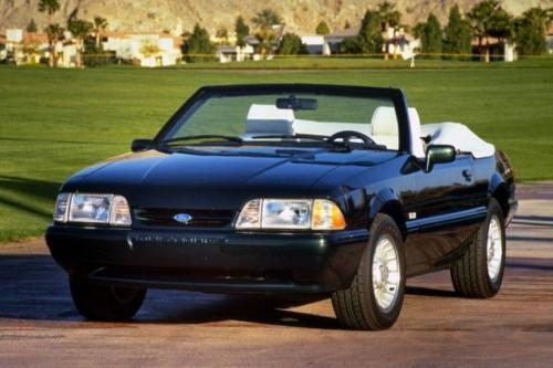 Mandriile americane: eveniment - La Multi Ani Mustang!8726