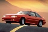 Mandriile americane: eveniment - La Multi Ani Mustang!8729