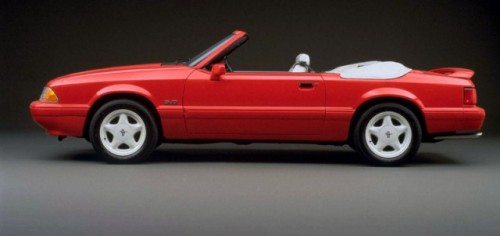 Mandriile americane: eveniment - La Multi Ani Mustang!8730