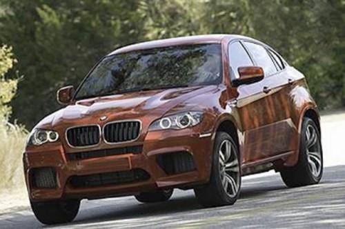 Imagini oficiale cu BMW X6 M8681