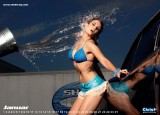 Calendar sexy: Hot Car Wash 20097712