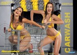 Calendar sexy: Hot Car Wash 20097722