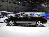 Geneva 2009 LIVE: Standul Peugeot6257
