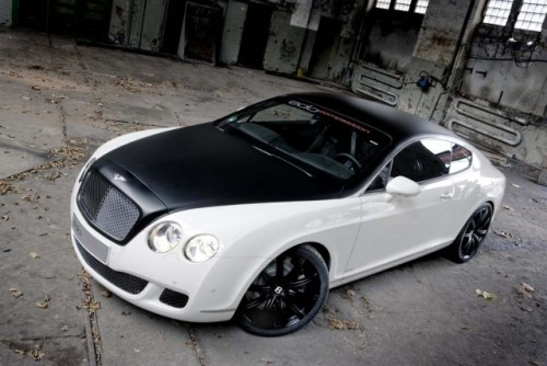 Edo speed GT, un Bentley dus la extrem!5653